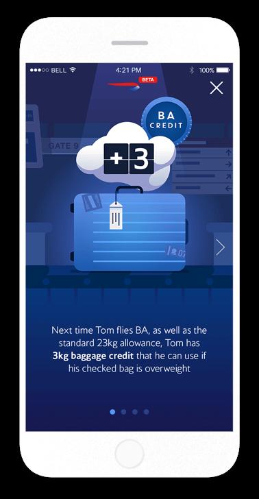 bag_credit3